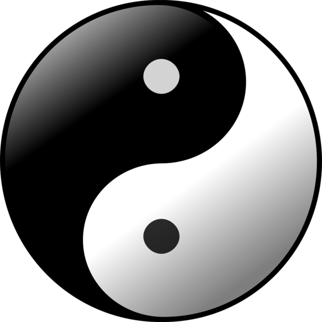 Soul Flame And Twin Flame Expand The Yin Yang Universe